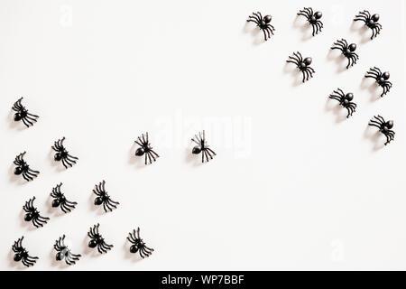 Las arañas de negro sobre un fondo blanco. Antecedentes La celebración de Halloween. Foto de stock