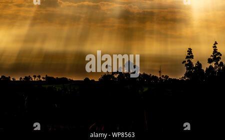 Silueta de la puesta de sol y por la tarde en el sur de Brasil, afrontado con Uruguay. Paisaje rural al final de la tarde. Colores y siluetas.