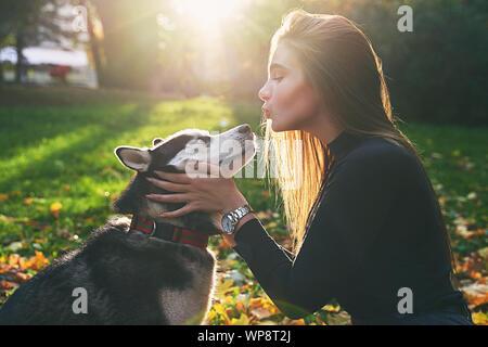 Hermosa joven jugando con su lindo perro husky pet en otoño parque cubierto con hojas caídas rojas y amarillas