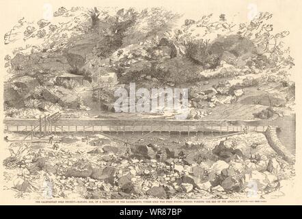 Distrito de oro californiana. Kanaha Bar. Mineros que trabajan en el American River 1852