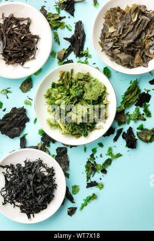 Diversas algas secas, verduras de mar, tomada desde la parte superior sobre un fondo azul con un lugar para el texto