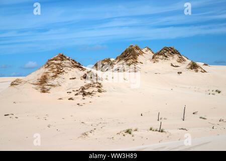 El avance de las dunas en el Parque Nacional Slowinski, Polonia