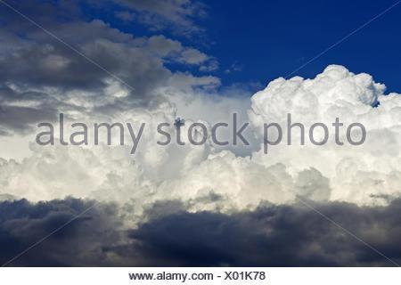Las nubes cúmulos, Alemania Baden-Wurtemberg
