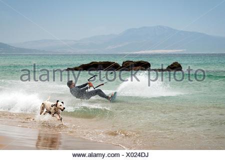 Hombre de kitesurf y perro corriendo en playa de Los Lances, Tarifa, Cádiz, Andalucía, España. Foto de stock