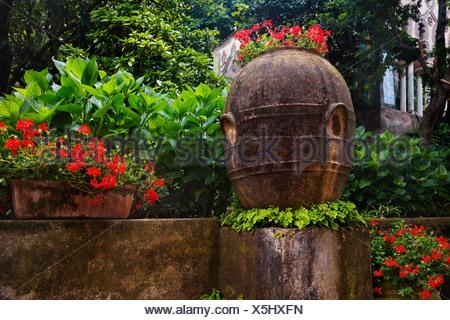 Las plantas en el jardín, Villa Cimbrone, Ravello, provincia de Salerno, Región de Campania, Italia