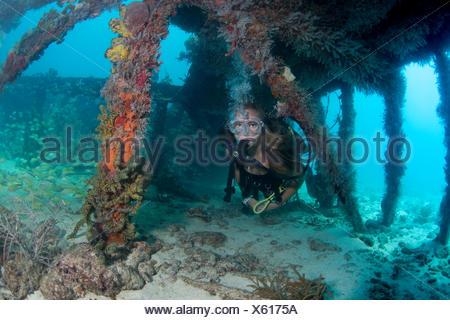 Scuba Diver explora las ruinas de Flagler's Barge.