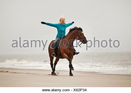 Mujer caballo freehand en un andaluz half-breed castrado, vistiendo un inglés, en la playa de herradura de Borkum, Baja Sajonia