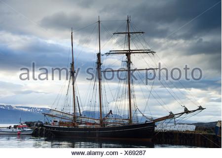Velero para observar las ballenas en el puerto de Husavik, Norðurland eystra, Nordurland, nordeste de Islandia, Islandia, Europa