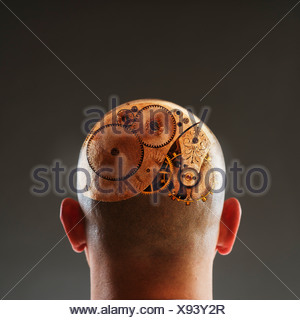 Vista posterior del hombre con engranajes en cabeza rapada