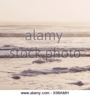 Seascape al atardecer, las olas que rompen en la orilla de la zona de mareas en las costas del Parque Nacional Olímpico en Washington, EE.UU. Foto de stock