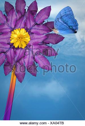 Cerca de butterfly aterrizar en flor