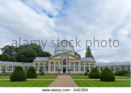 Efecto Invernadero, sirvió como modelo para el Crystal Palace de Londres, Syon House, hogar de la familia de los Duques de Northumberland en Londres Foto de stock