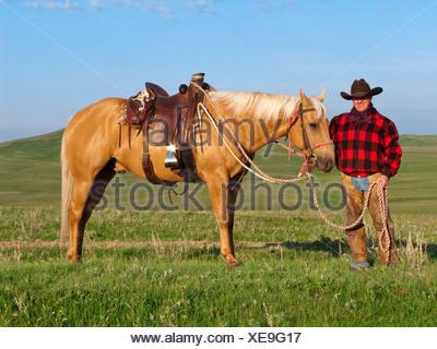 Ganadería - un vaquero posa con su caballo en una pradera verde / de Alberta, Canadá.