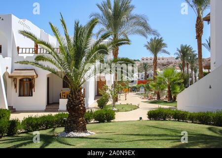 Charm el-Cheikh, Égypte, 05 Septembre, 2018. Station touristique de luxe tropical près de la Mer Rouge. Concept de vacances d'été Banque D'Images