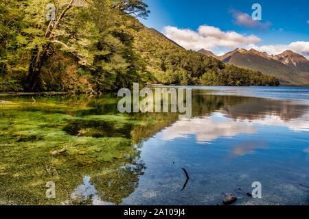 Belle forte réflexions sur l'eau cristalline du lac Gunn Nouvelle-zélande Fiordland Banque D'Images