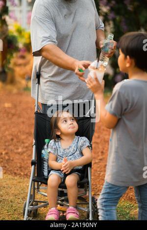 Dans le parc de la famille, l'automne Banque D'Images