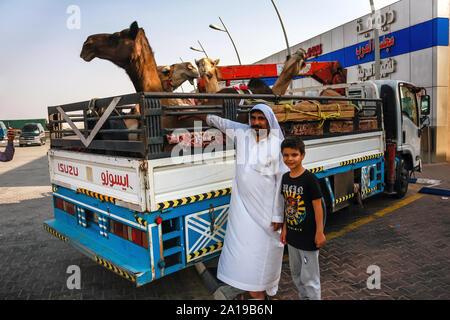 Un saoudien avec un fils près d'un petit camion avec des chameaux dans une station-service sur la route Makkah Al Mukarramah, en Arabie Saoudite Banque D'Images