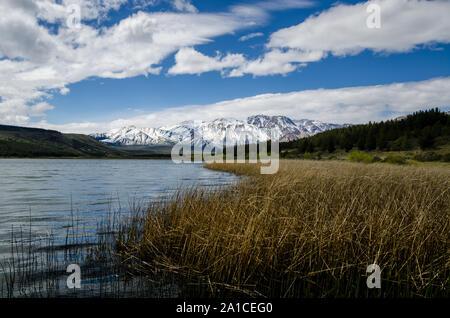 Paysage de Patagonie du lac avec des montagnes de neige et de la forêt Banque D'Images