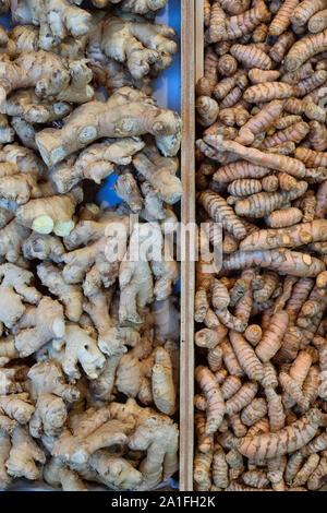 Zingiber officinale et de Curcuma longa. Le gingembre et le curcuma racines sur l'affichage à Daylesford automne show. Cotswolds, Gloucestershire, Angleterre Banque D'Images