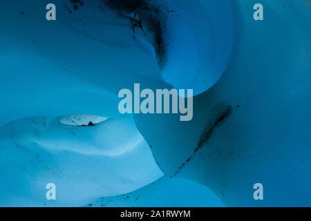 Couper une arche de glace de glacier ressemble à un nez, tandis que deux hollows semblent créer des sockets de glace aux formes bizarres à l'intérieur d'une grotte de glace en Alaska.