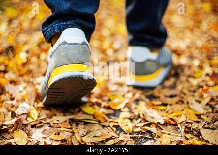 Marcher sur la chaussée en automne. Vue arrière sur les pieds d'un homme marchant le long du trottoir avec tombé foilage. Temps d'automne vide vide Abstract background