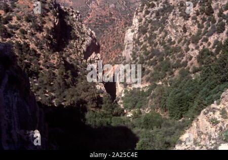 Le Grand Canyon est un canyon aux flancs abrupts sculptés par le fleuve Colorado dans l'Arizona, United States. Le Grand Canyon est de 277 miles (446 km) de long, jusqu'à 18 miles (29 km) de large et atteint une profondeur de plus d'un mile (6 093 mètres) ou 1 857 pieds Banque D'Images