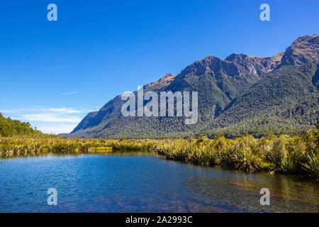 Vue du lac Gunn dans le Parc National de Fiordland Banque D'Images