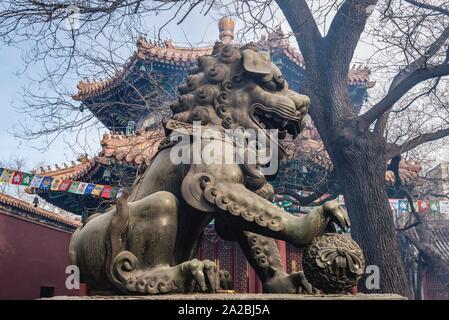 Tuteur masculin lion avec balle en Temple de Yonghe aussi appelé temple du Lama de l'école Gelug du bouddhisme tibétain dans le district de Dongcheng, Beijing, Chine. Banque D'Images