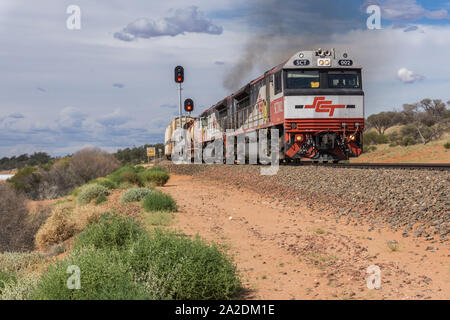 Train roulant à travers l'Outback de l'Australie du Sud Banque D'Images