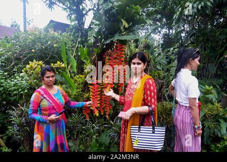 Mawlynnong, Shillong, Meghalaya, en Inde, 16 juin 2019: Deux dame indiens en votant et touristiques locales une dame holding Heliconia Rostrata Heliconia pince de homard () Banque D'Images