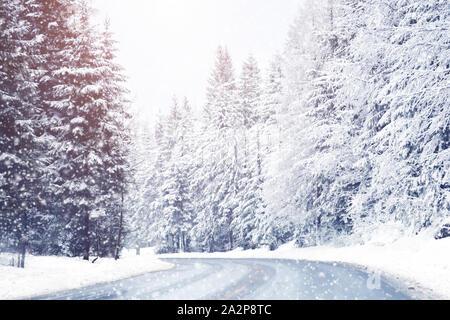 Belle Neige sapins dans les montagnes alpines. Paysage d'hiver. Banque D'Images
