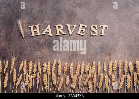 Une frontière d'épis de blé ou de seigle foncé sur un fond rustique. Concept la récolte d'automne. Vue de dessus Banque D'Images