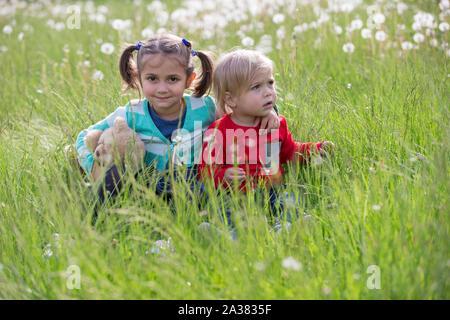 Petit frère et sœur dans le pré. Les enfants s'asseoir sur l'herbe. Amis dans un champ de pissenlit Banque D'Images