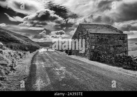 Ancienne grange en pierre et des moutons sur la route dans la région de Birkdale Swaledale sur la B6270 au-dessus Nateby, Yorkshire Dales