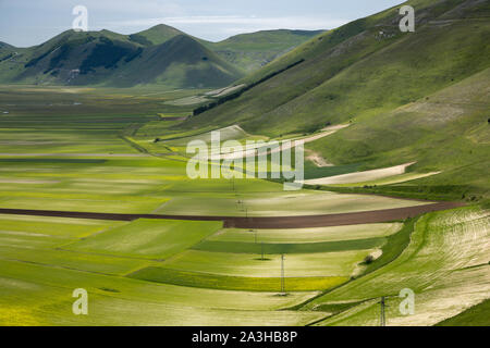 Les couleurs et textures du Piano Grande, parc national Monti Sibillini, Ombrie, Italie Banque D'Images