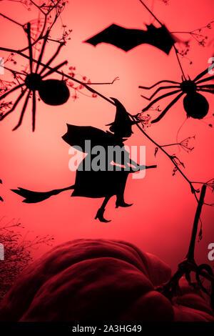 Sorcière vole sur le Sabbat. La mode créative avec un arrière-plan Halloween sorcière volant d'ossature et les araignées d'un gradient de lumière au néon rouge contexte Banque D'Images