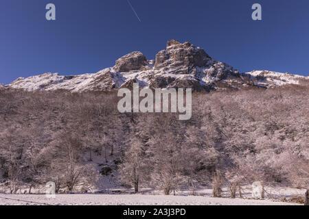 Haute montagne et forêt gelée dans le Parc National de Somiedo Banque D'Images