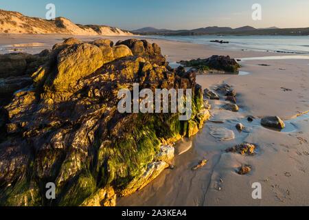 Rochers incrustés d'algues et de lichen sur cinq doigts Strand, Trawbreaga Bay et Dunaff Head de soldats Hill, péninsule d'Inishowen, Co Donegal, Irlande Banque D'Images