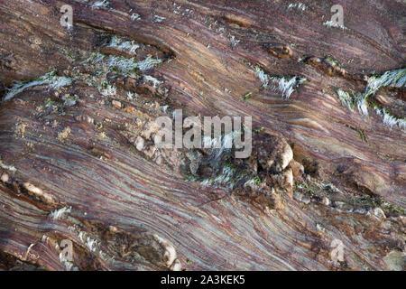 Les textures de roches sur la plage de la baie Kinnagoe au lever du soleil, péninsule d'Inishowen, Co Donegal, Irlande Banque D'Images