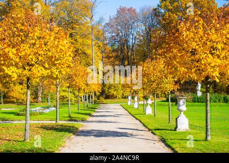Magnifique jardin avec petit chemin en automne et de beaux arbres aux couleurs jaune et orange, blanc antique vases) sur les côtés