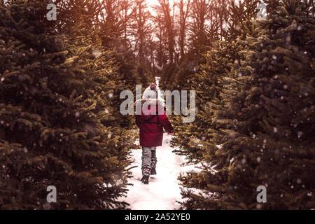 Garçon à la recherche d'un arbre de Noël parfait sur un jour d'hiver enneigé
