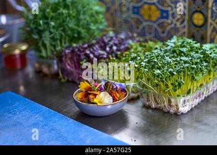 Concept alimentaire. Des herbes fraîches et des fleurs pour la décoration sur la table dans la cuisine. Le processus de cuisson de spaghettis aux fruits de mer. Banque D'Images