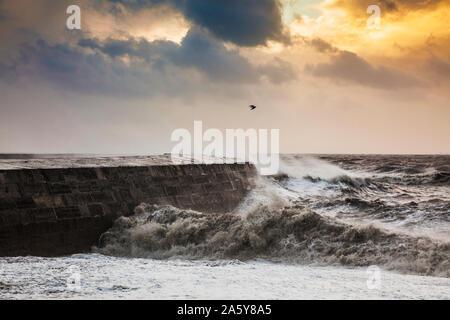 Vagues se briser sur la Cobb à Lyme Regis dans le Dorset. Banque D'Images