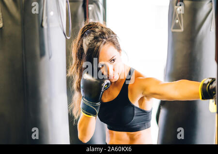 Boxer de sport en formation