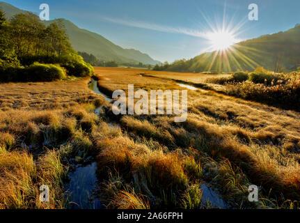 Belle matinée dans le marais près des montagnes Banque D'Images