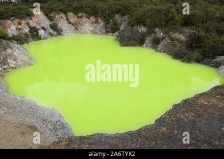 Karikitea Roto lake, soufre ou 'la baignoire du diable', mettant en vedette les couleurs vives vert acide à Wai-O-Tapu zone géothermique de Rotorua, Nouvelle-Zélande Banque D'Images