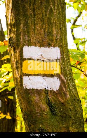 Blanc et jaune, peint sur un arbre dans la forêt. Signe touristique donnant une orientation pour les randonneurs durant la sentier de randonnée. Marquage de pionnière, les chemins dans les zones de loisirs de plein air. Banque D'Images