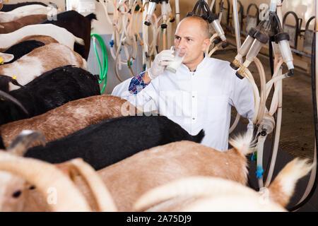 L'ouvrier agricole dans la région de grange avec machines à traire la vache Banque D'Images