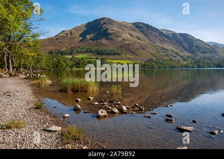 En regardant le long du lac vers High Snockrigg en été Buttermere Lake District National Park Cumbria Angleterre Royaume-Uni Grande-Bretagne