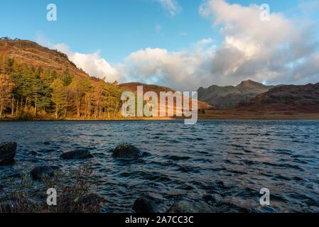 Belle et moody matin automne lumière à Blea Tarn dans le district d'English Lake avec vue sur la chaîne des Langdale Pikes, et Côté Pike au cours de l'automne. Banque D'Images